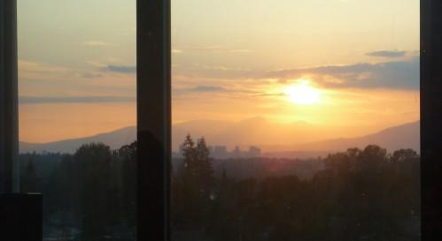 Tasia_view